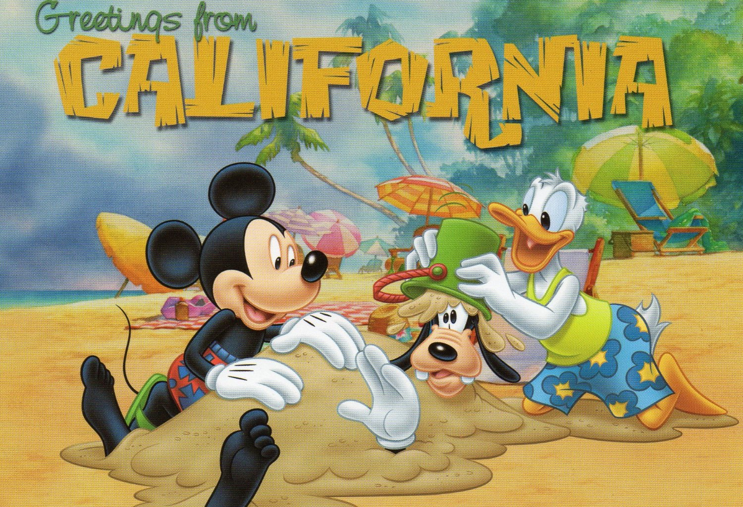 Buy cheap fast greeting cards postcards of hibiscus express usa xxxx out of stock more postcards at httphibiscusexpress postcards xxxxx 439 greetings from california postcard disney california pc57 wd cal m4hsunfo